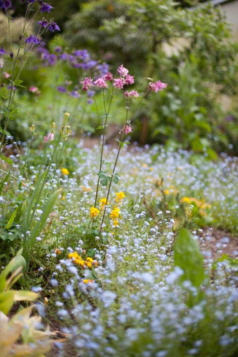 Garten Steffens, Copyright Haaner Gartenlust 2016; Photo: Markus Kölsch